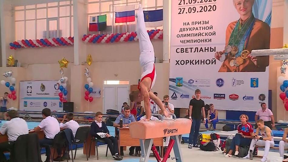 Гимнаст-на-коне1002.jpg
