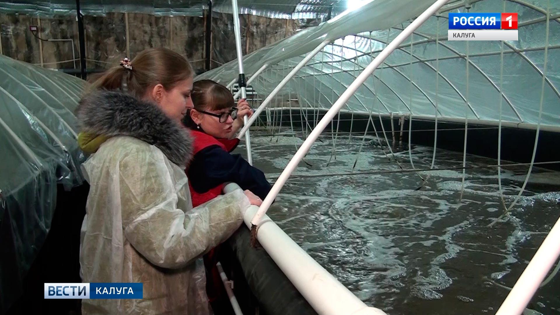 ВКалужской области открыли крупнейшую в РФ креветочную ферму