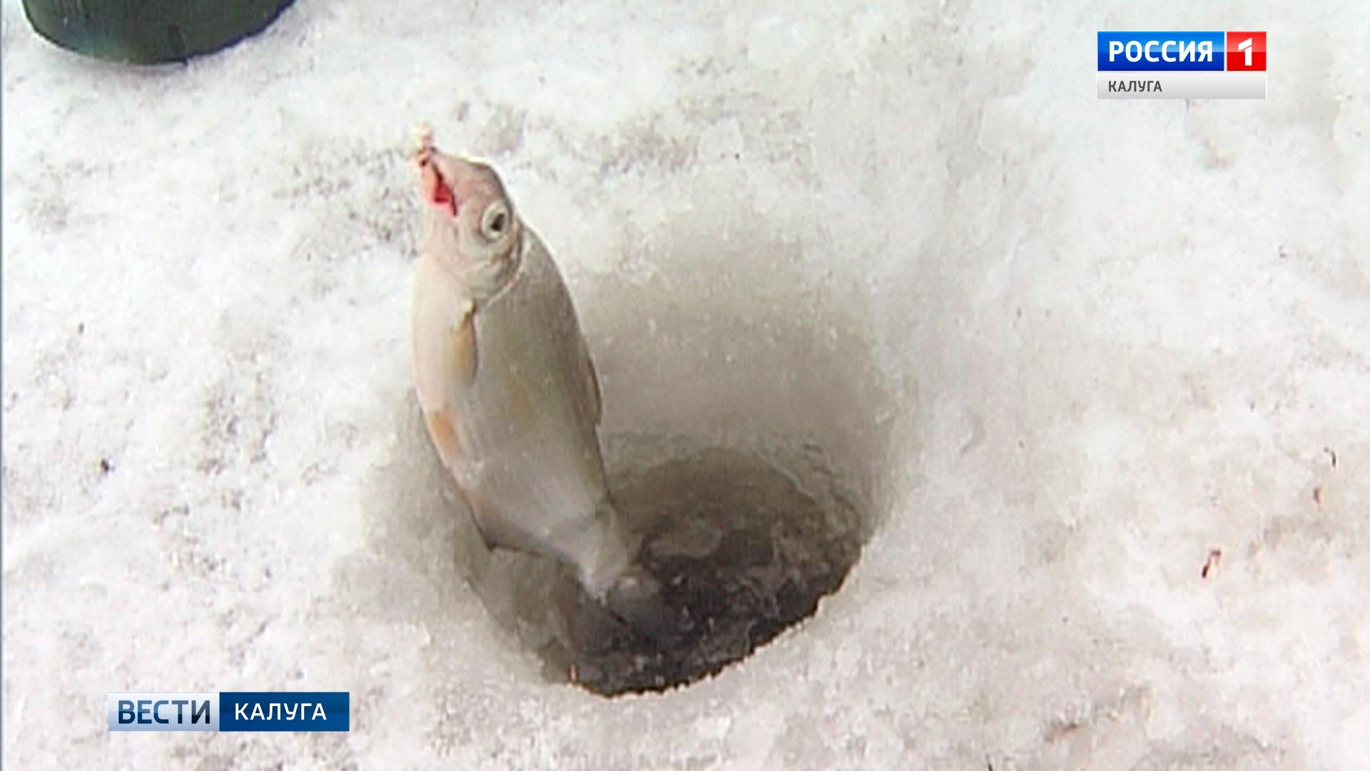 конкурс про рыбалку