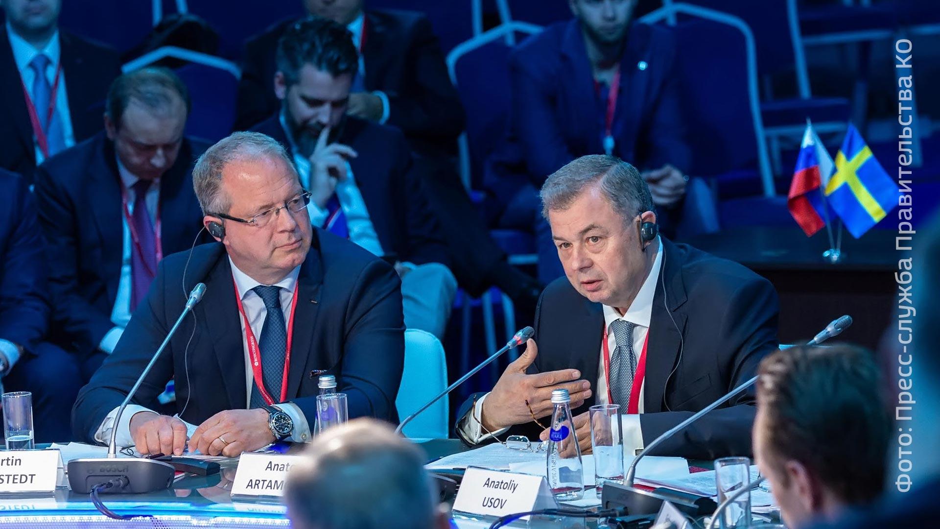Калужская область иШвеция: обсуждаются перспективы последующего сотрудничества